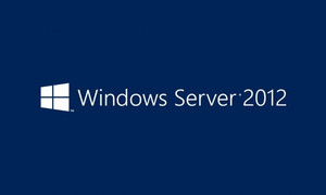 Windows Server 2012 OEM 1PK 5 Usuarios DEV CAL
