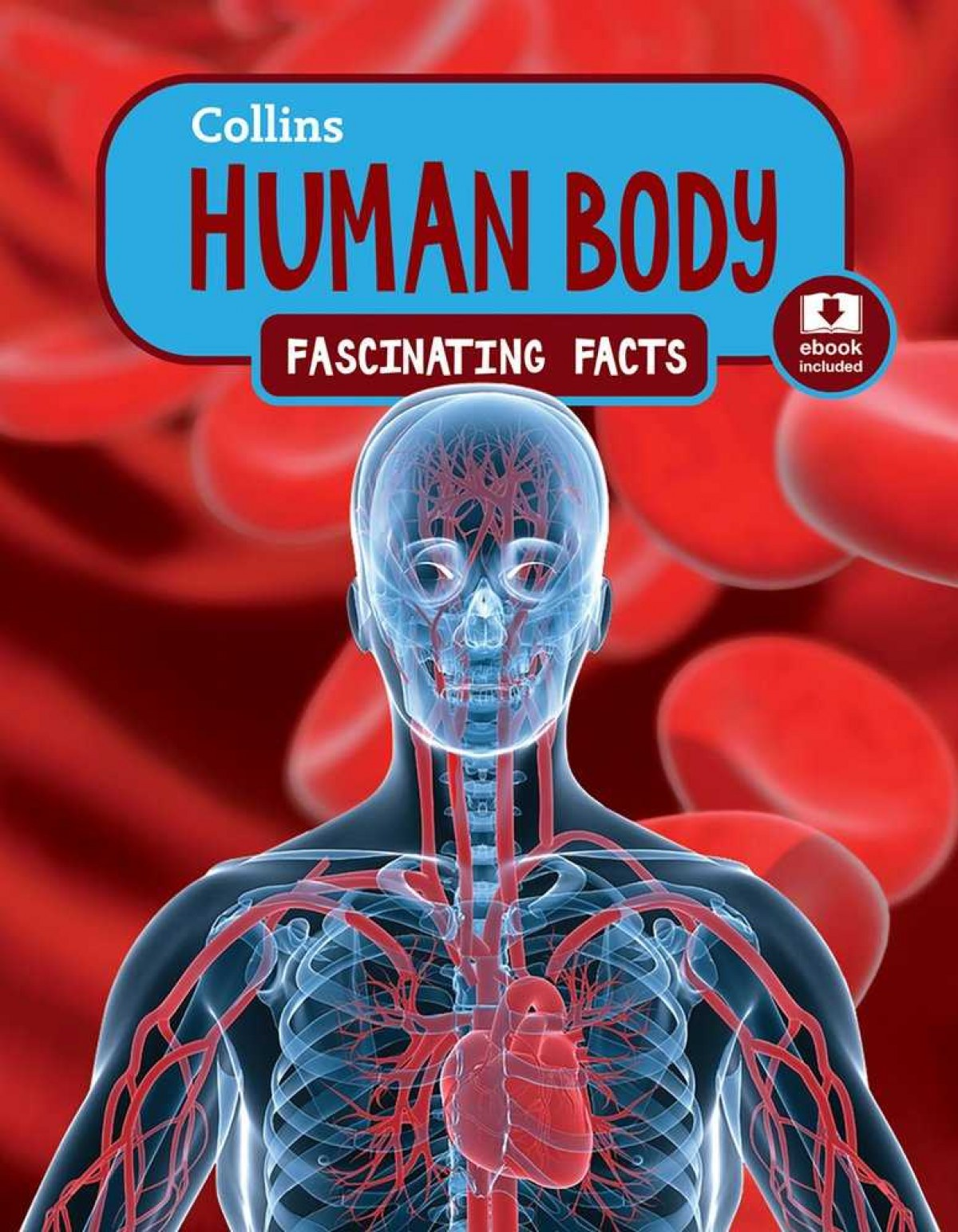 THE HUMAN BODY.(FASCINATING FACTS)