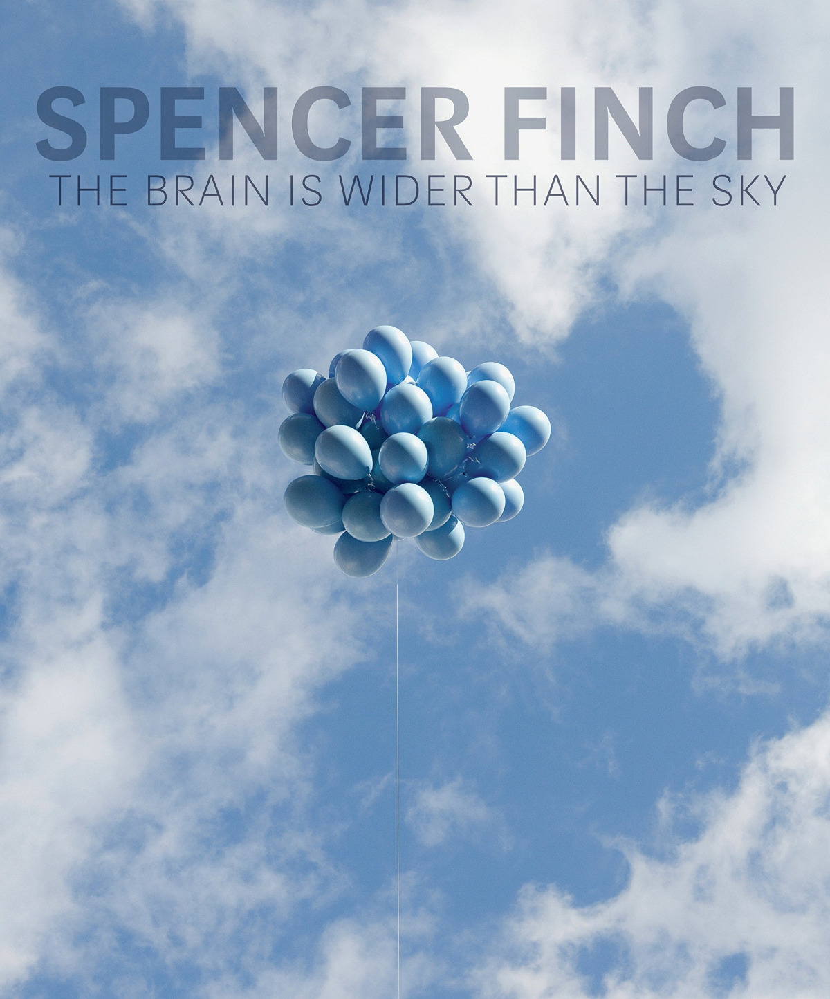 SPENCER FINCH:THE BRAIN IS WILDER THAN THE SKY