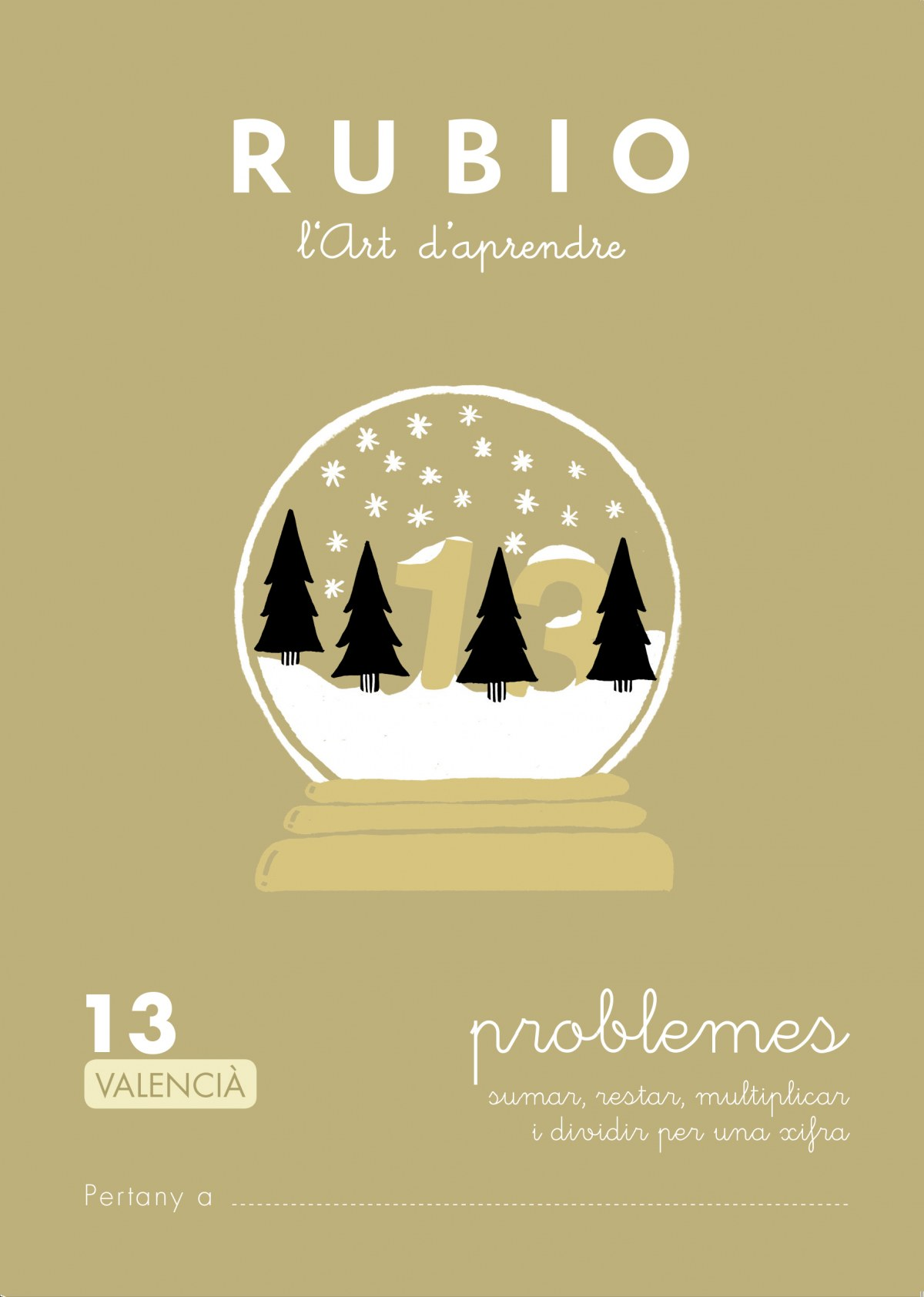 PROBLEMES 13