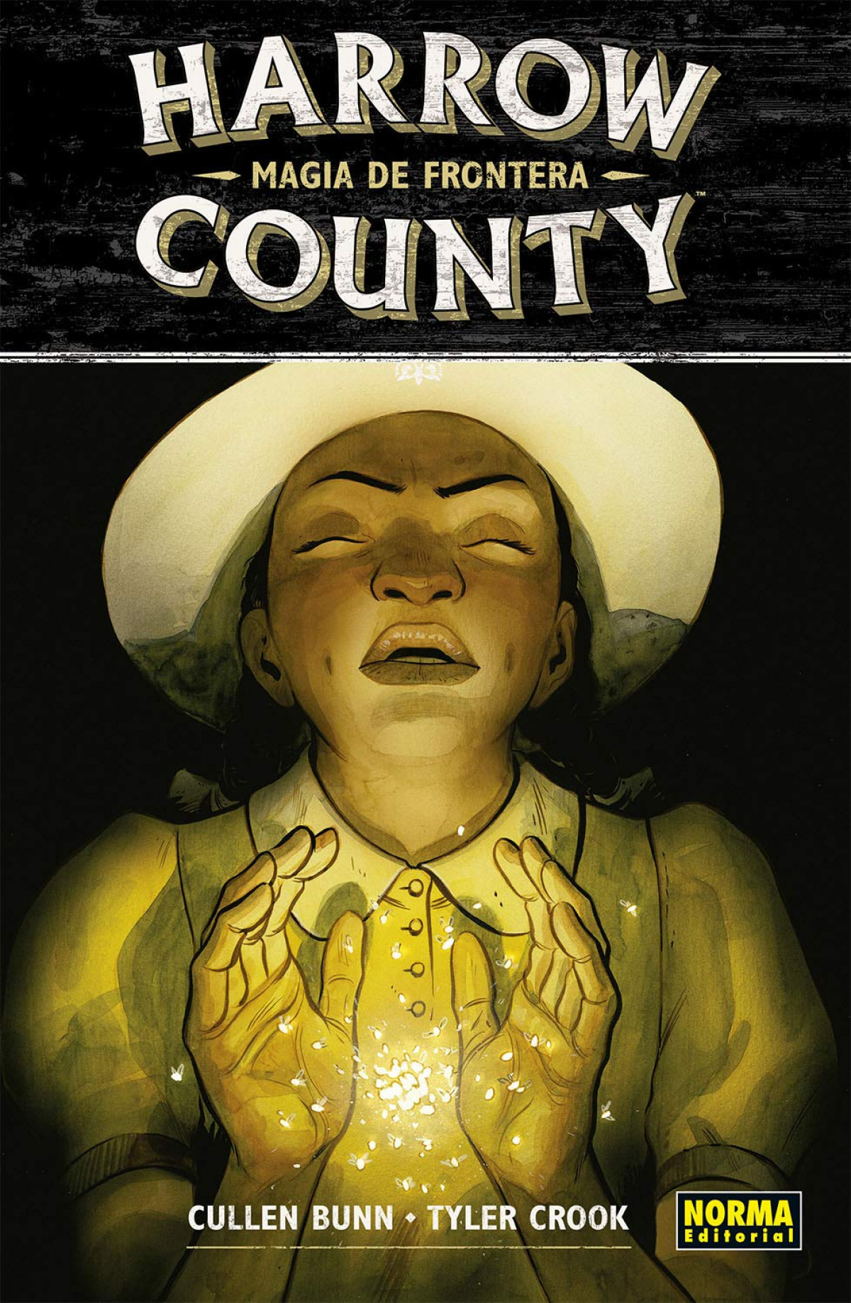 HARROW COUNTY 6