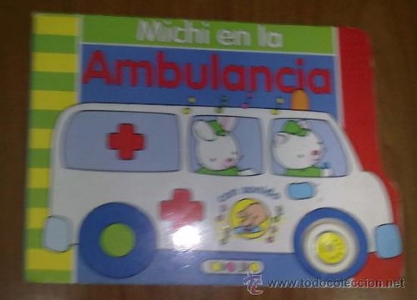 MICHI EN LA AMBULANCIA