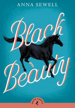 Black beauty.(puffin)