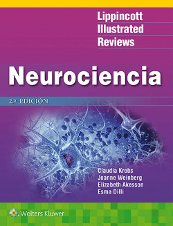 LIR: Neurociencia