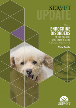 updade main Endocrine dosorders of drenal and thyroid axes in dogs and cats