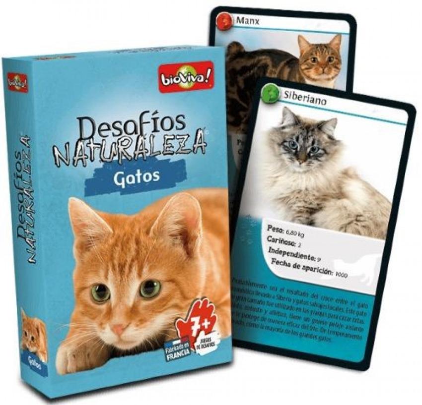 Cartas desafios naturaleza gatos