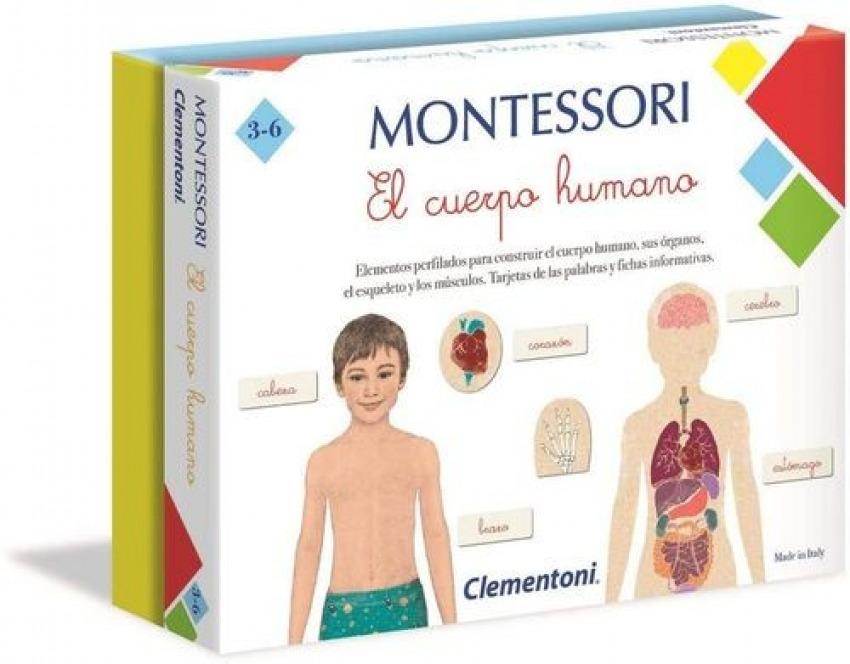 Montesori el cuerpo humano