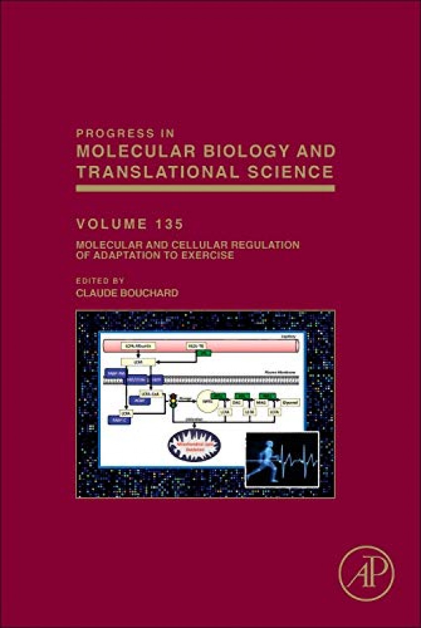 Molecular and cellular regulation of adaptation exercise