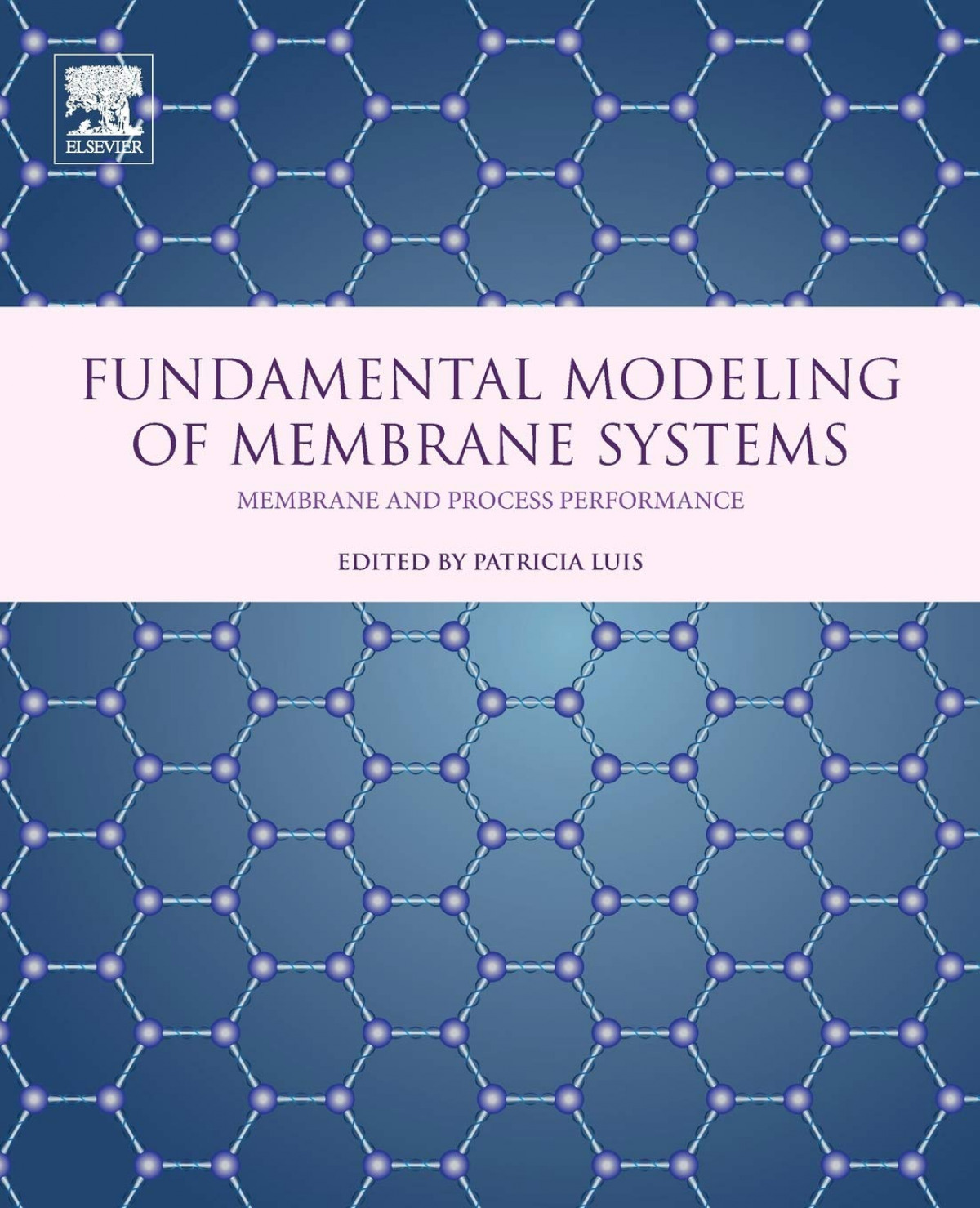 Fundamental modeling of membrane systens