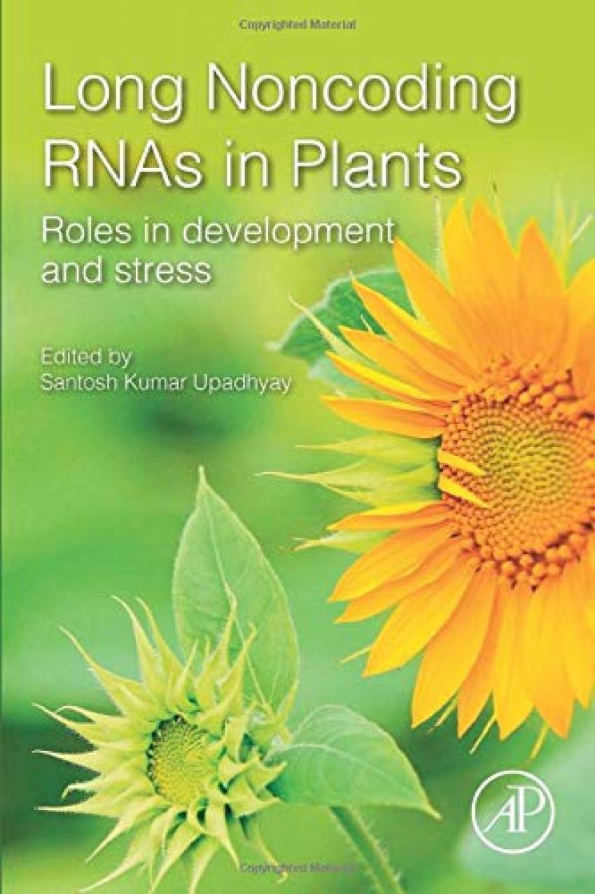 Long non-coding rnas in plants