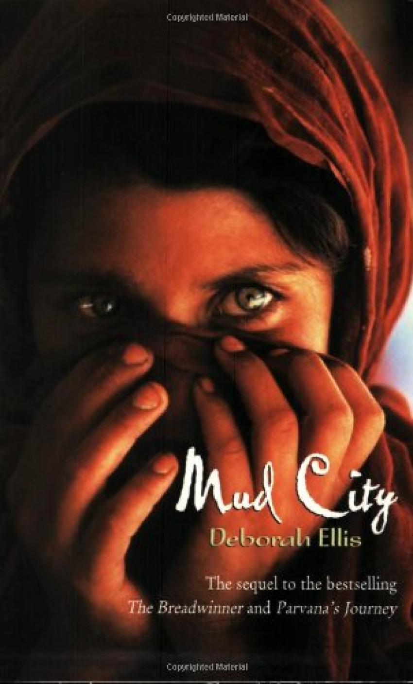 Mud city