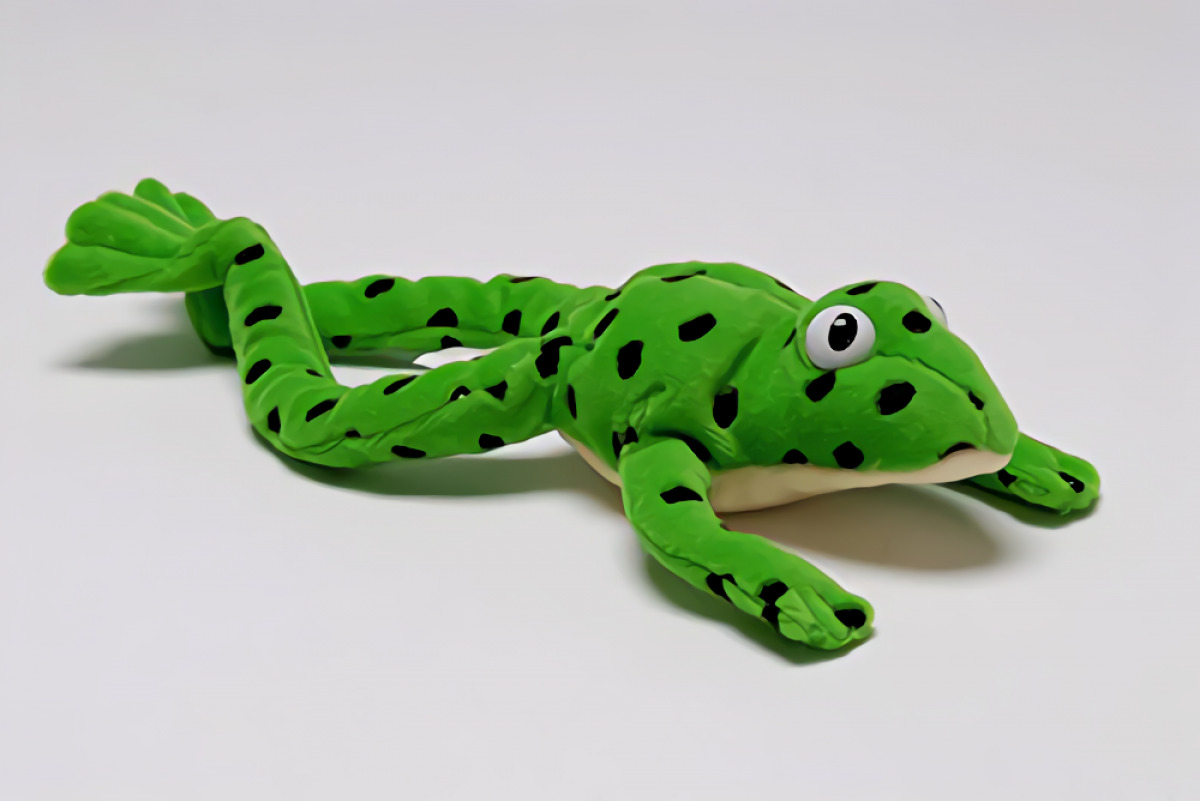 READ WRITE INC.FRED THE FROG-TOY