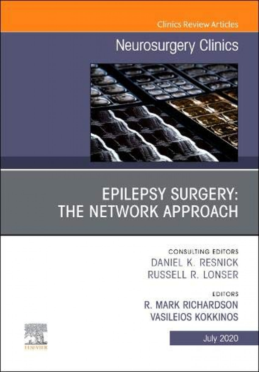 EPILEPSY SURGERY. THE NETWORK APPROACH