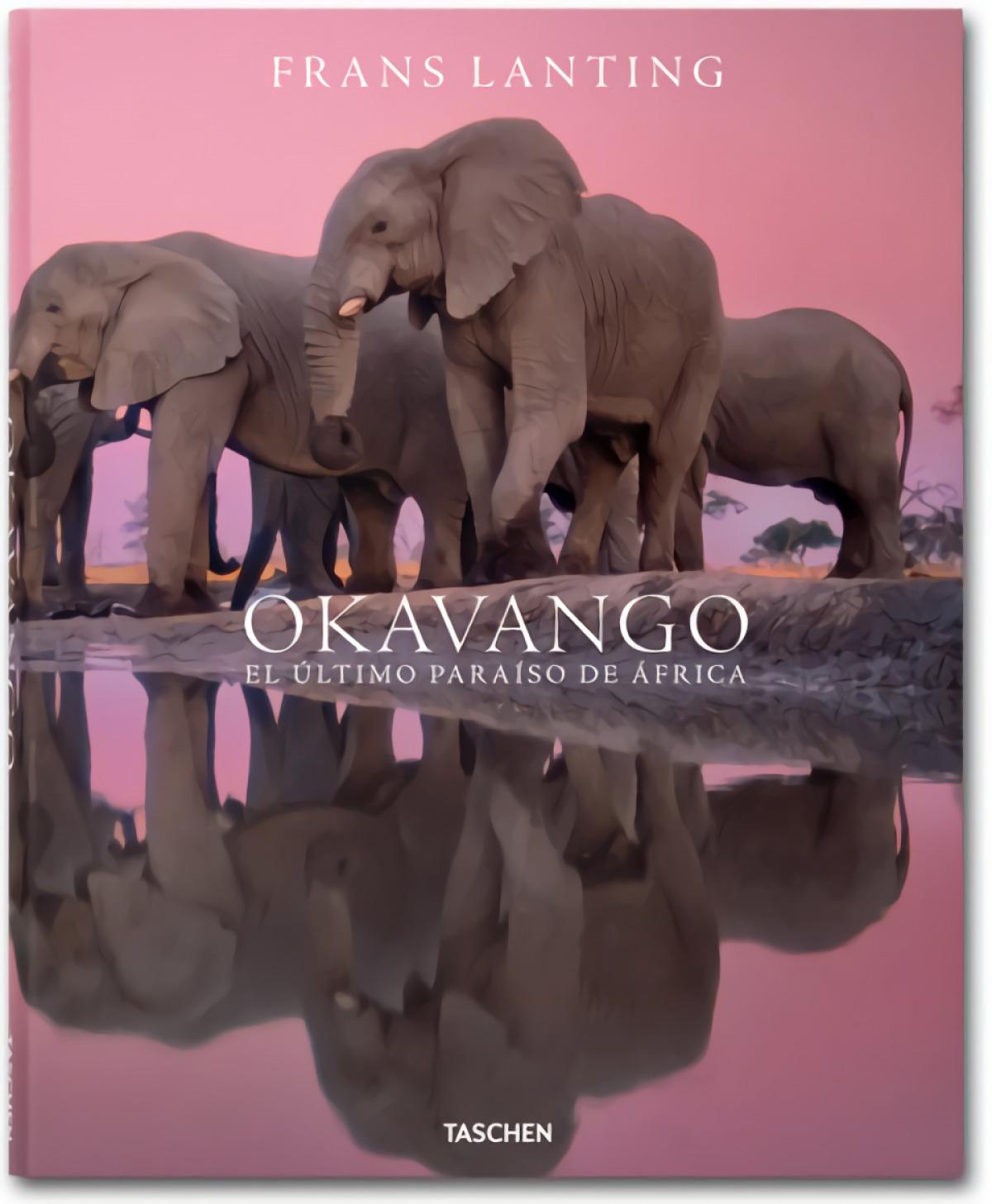 Lanting, Okavango-E