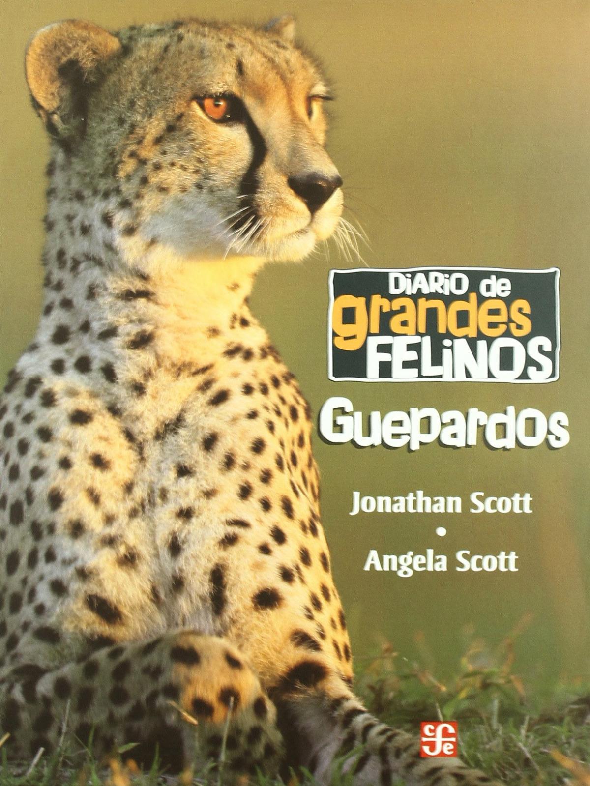 Diario de grandes felinos : Guepardos