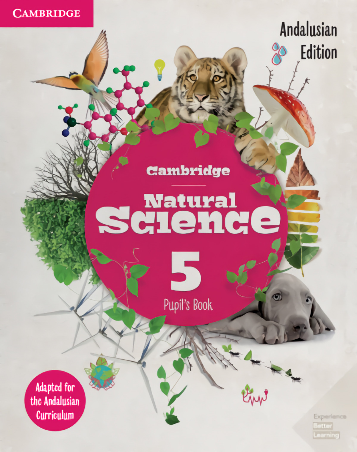 NATURAL SCIENCE 5ºEP ANDALUCIA 19