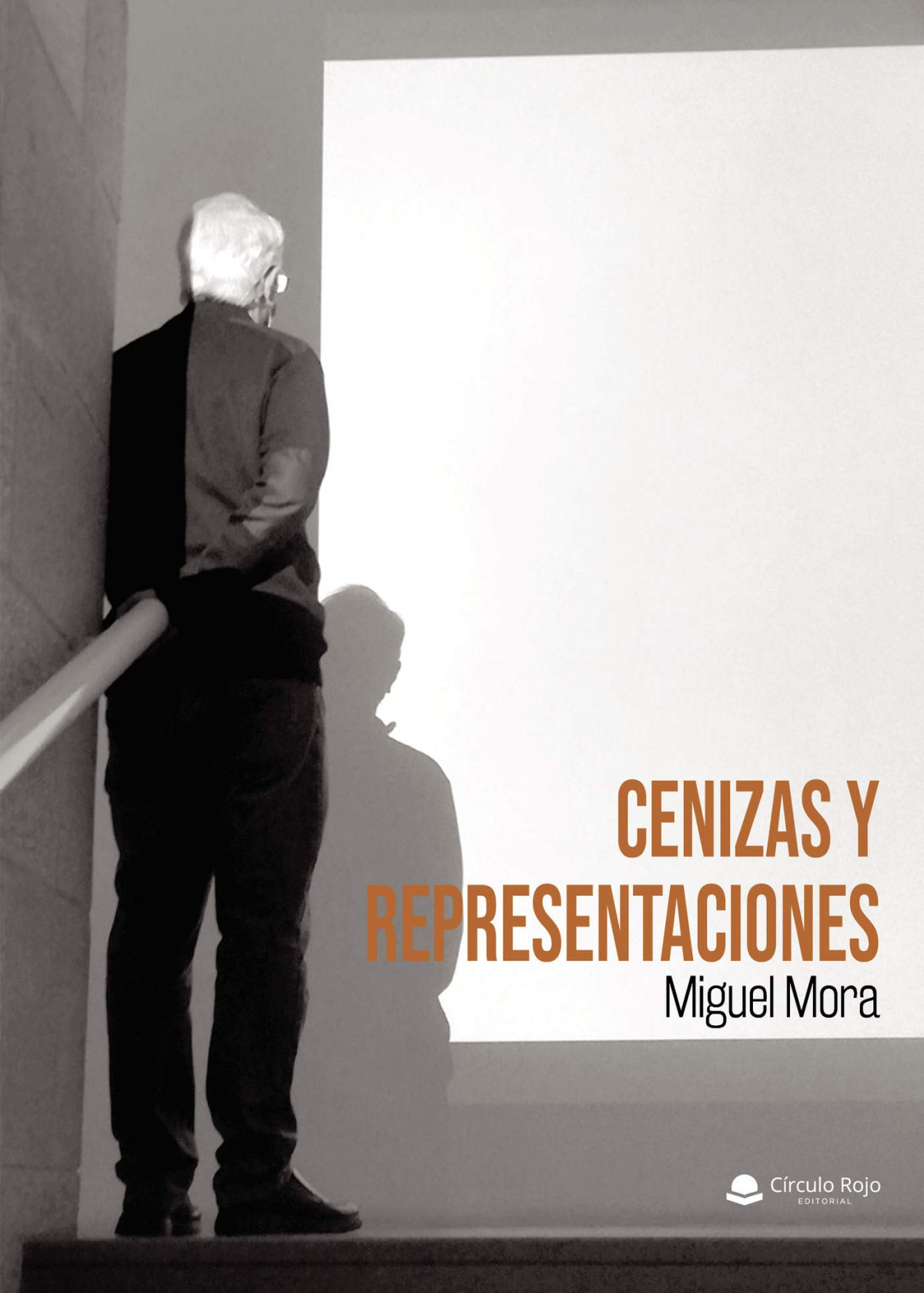 Cenizas y representaciones