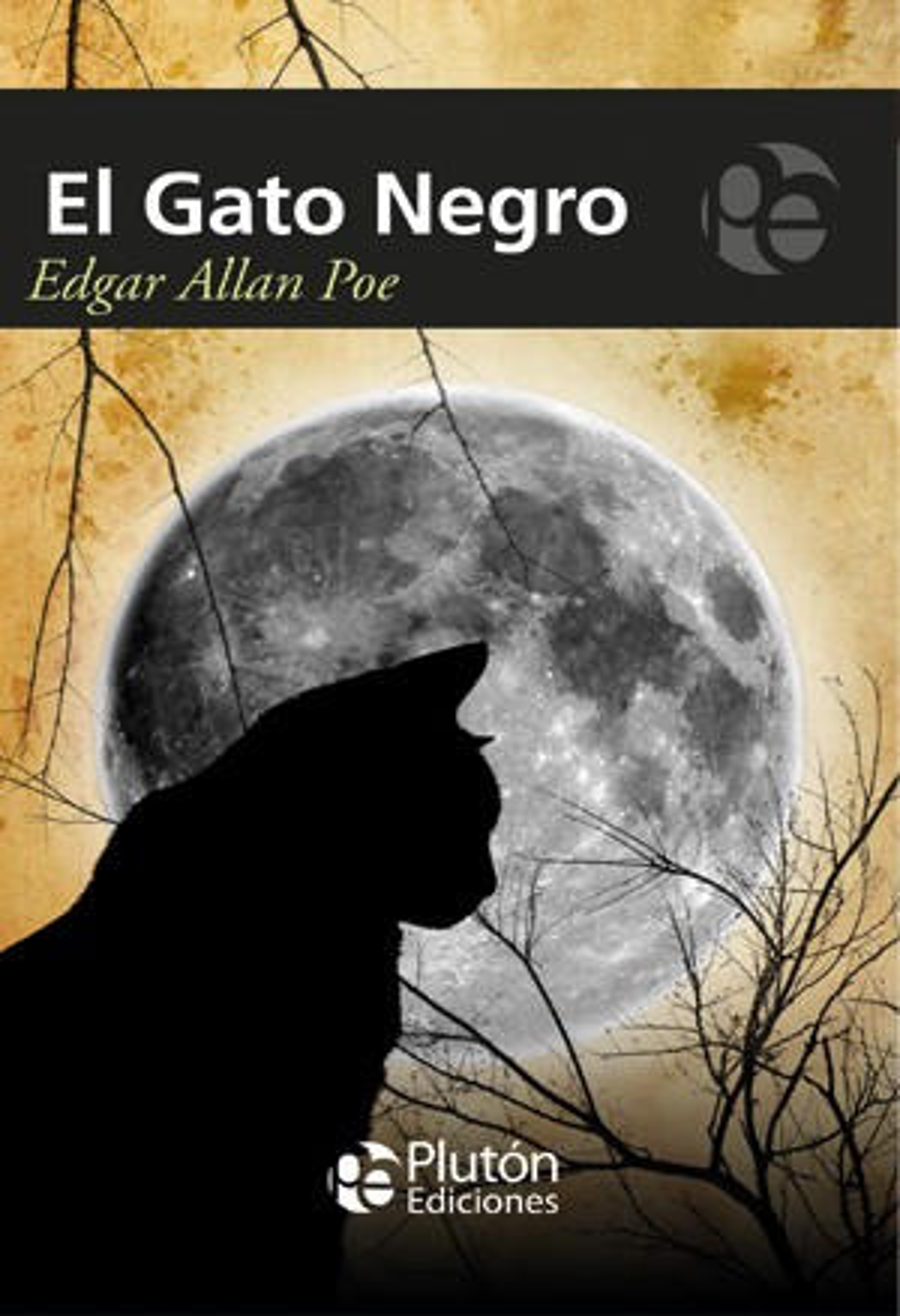 Gato negro y otros relatos/black cat an other stories