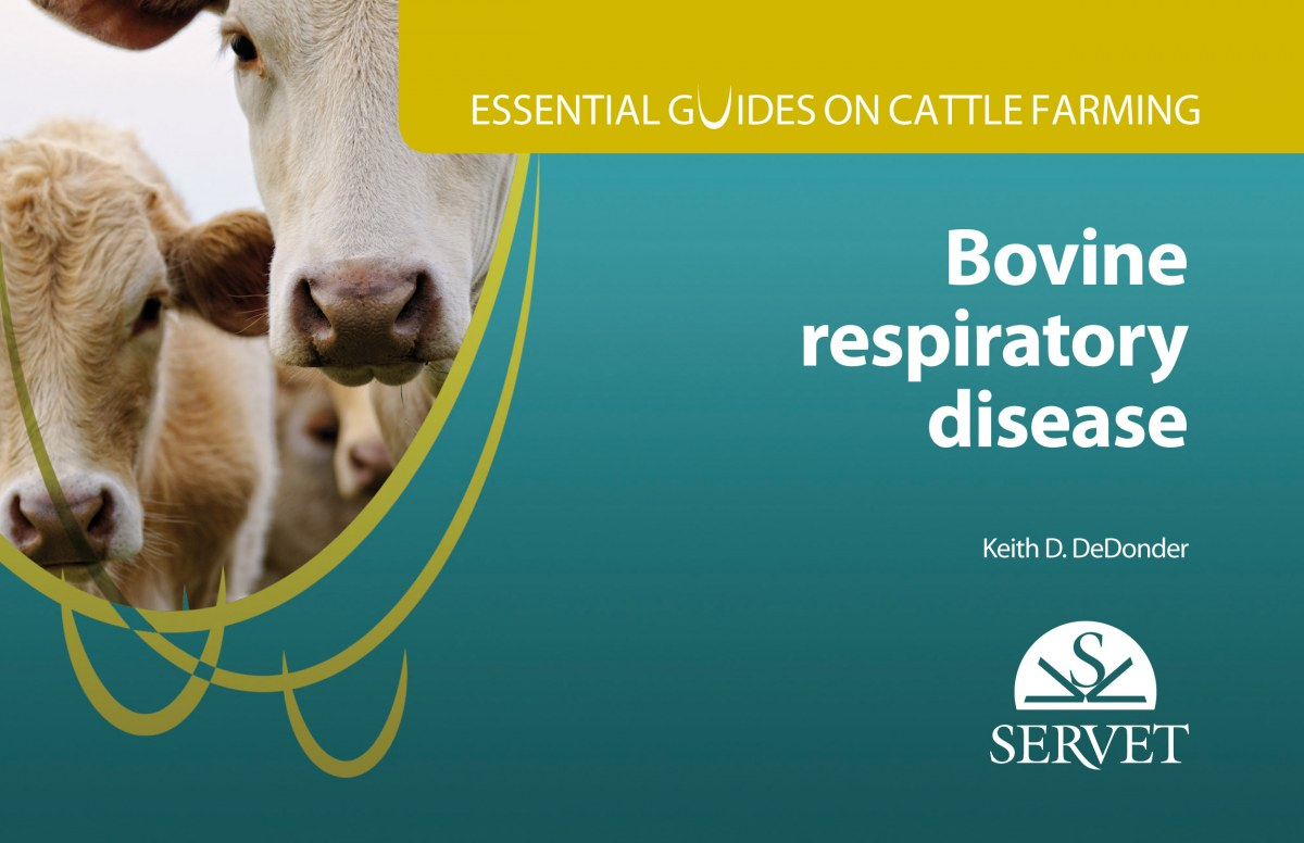 Essential guides on cattle farming. Bovine respiratory disease