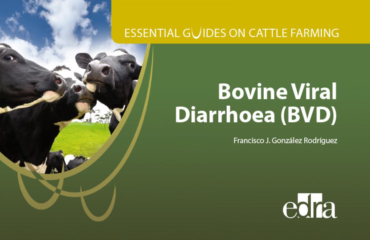 Essential guides on cattle farming. Bovine Viral Diarrhoea (BVD)