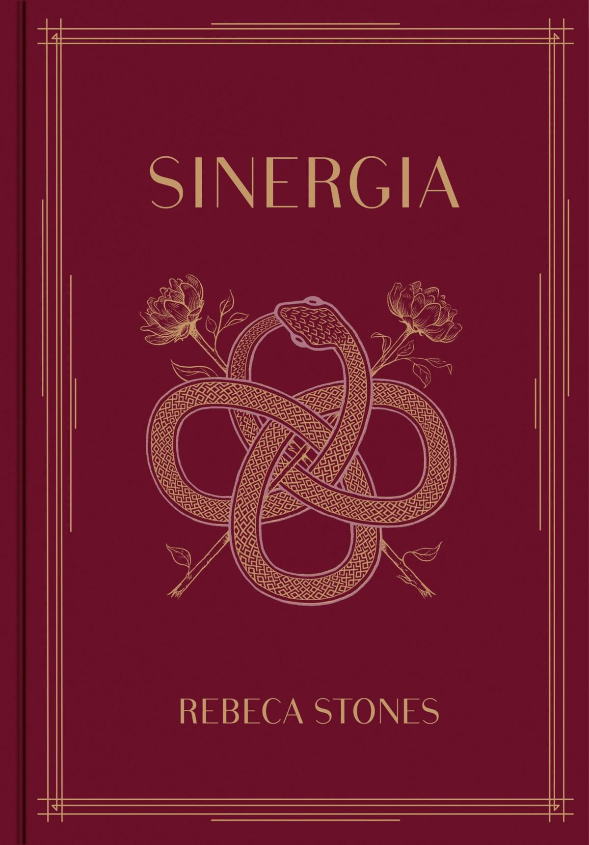 SINERGIA 9788417460099