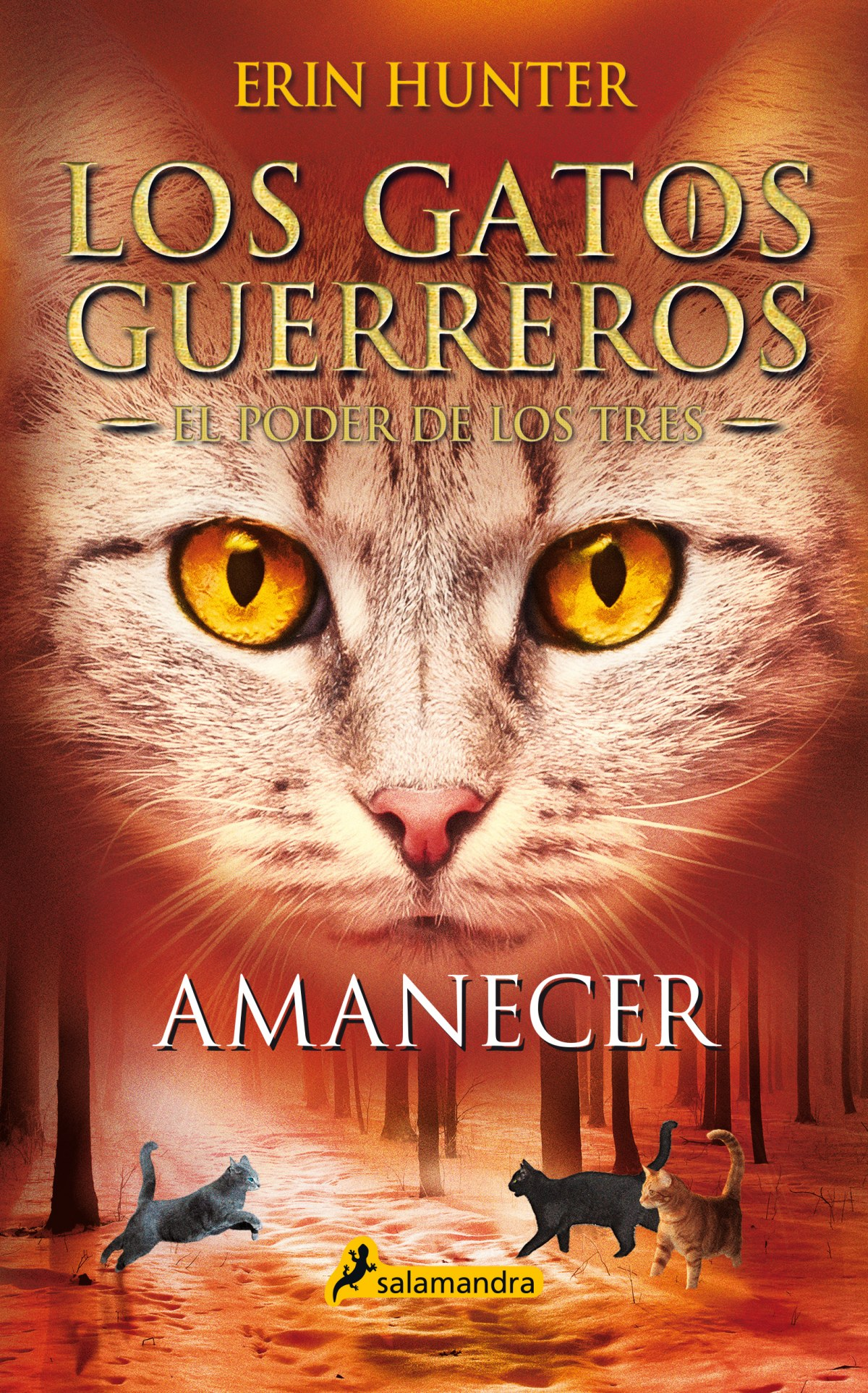 Amanecer (Los Gatos Guerreros , El Poder de los Tres 6)