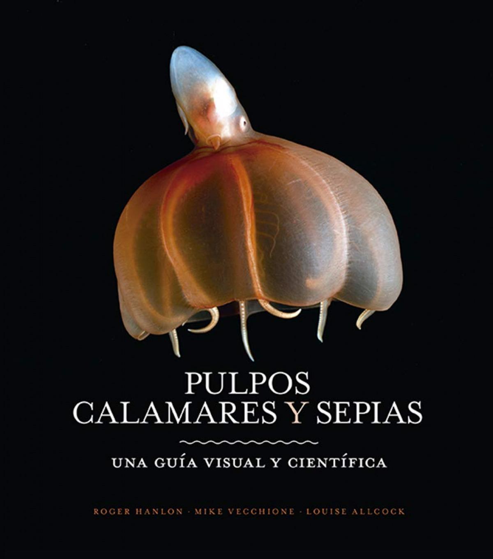 PULPOS, CALAMARES Y SEPIAS