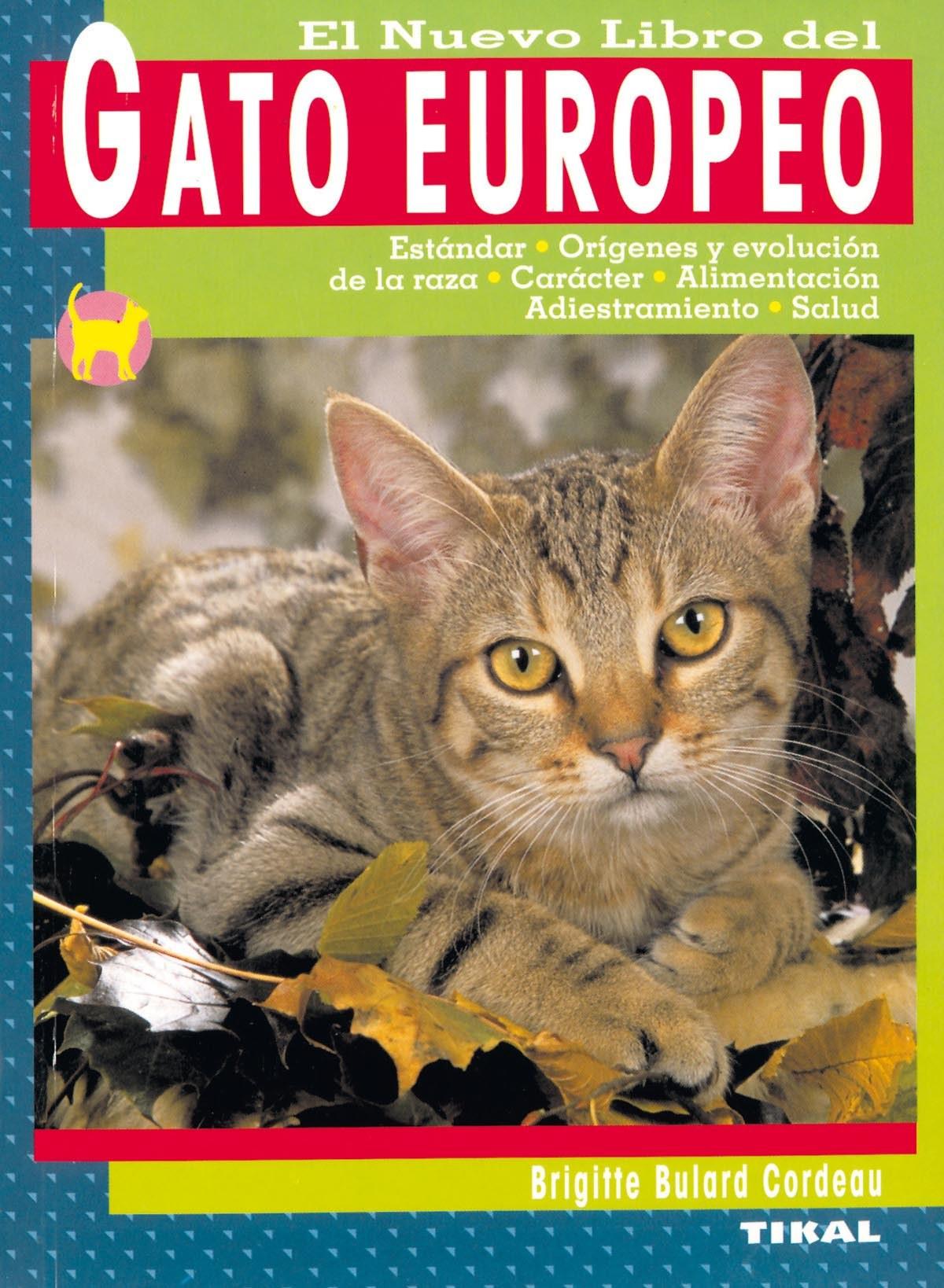 Gato europeo 9788430548224