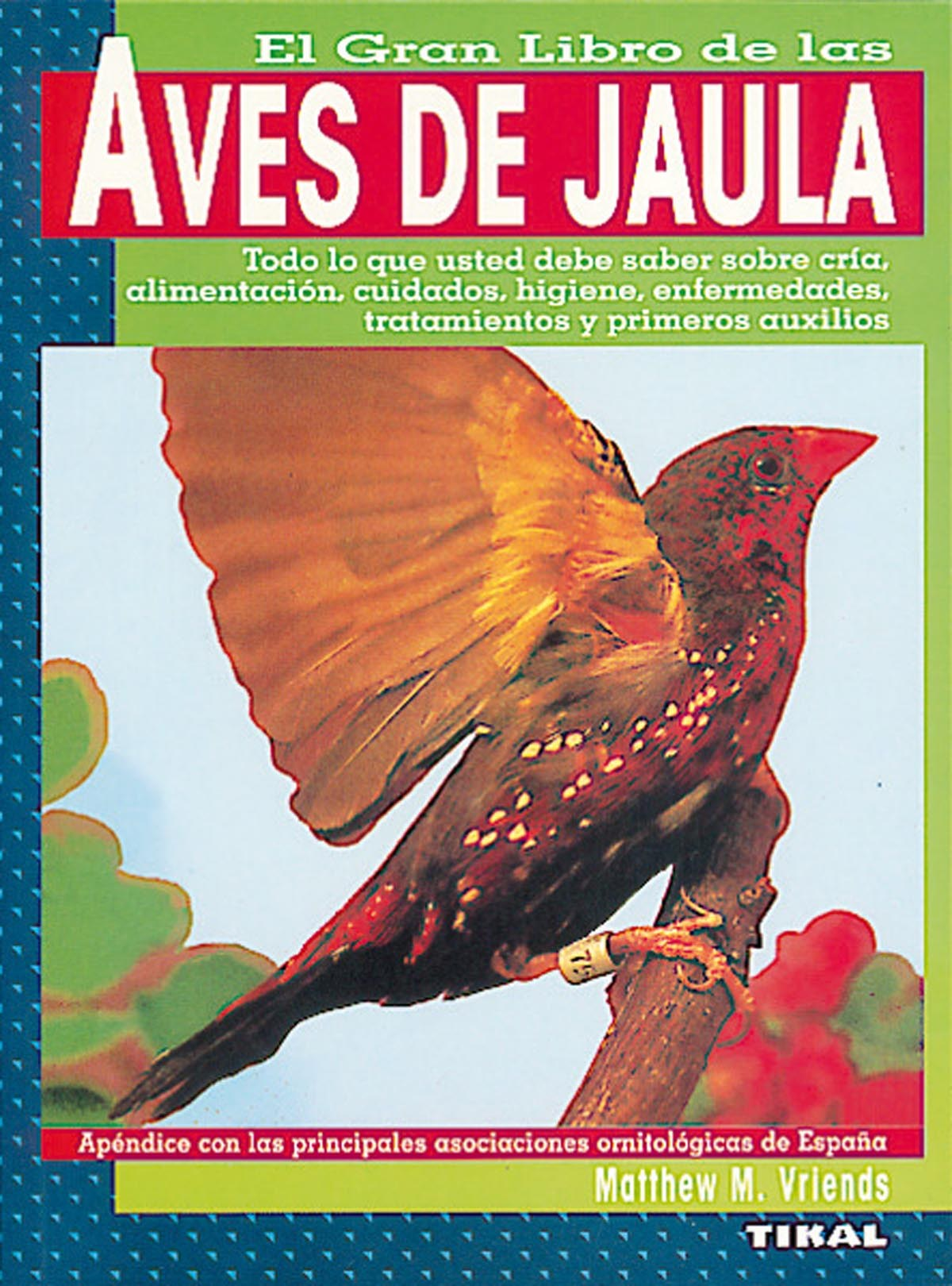 Aves de jaula. 9788430584932