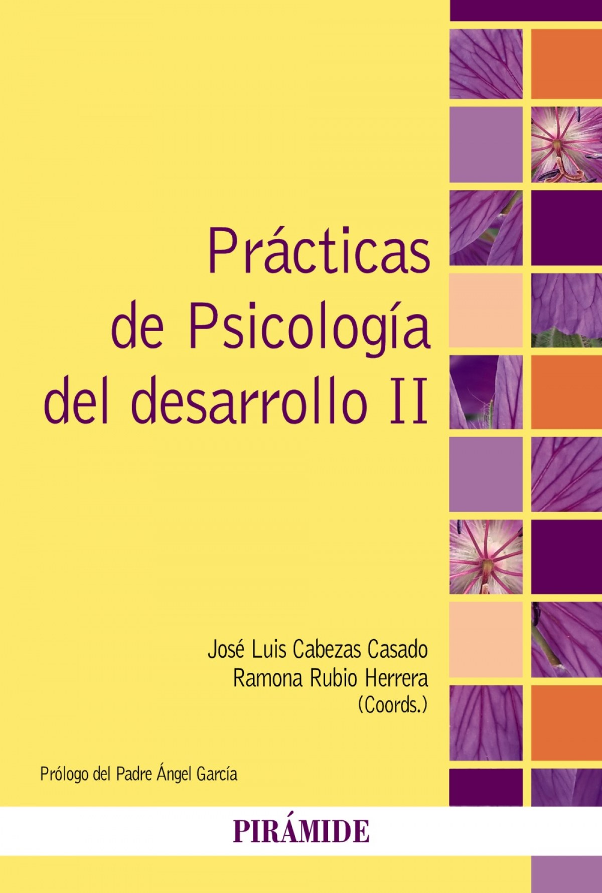 PRACTICAS DE PSICOLOGIA DEL DESARROLLO II.(PSICOLOGIA)