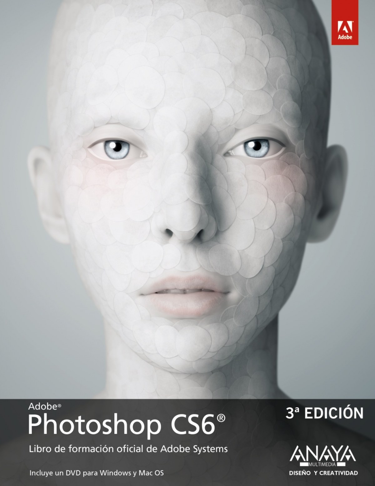 Photoshop CS6 9788441532489