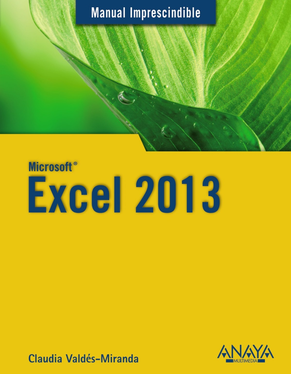 Excel 2013 9788441534483