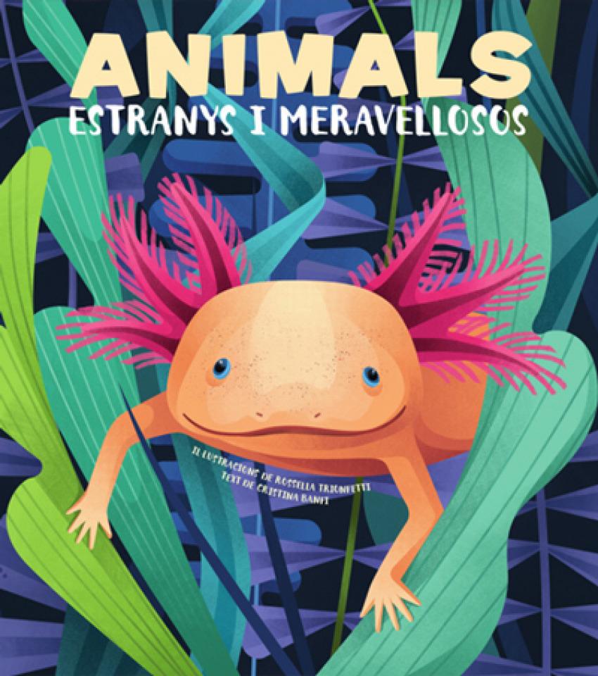 ANIMALS EXTRANYS I MERAVELLOSOS (VVKIDS)