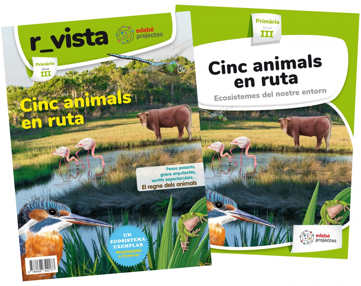 CINC ANIMALS EN RUTA 3R.PRIMARIA. ECOSISTEMES DEL NOSTRE ENTORN. PROJECTES 2019
