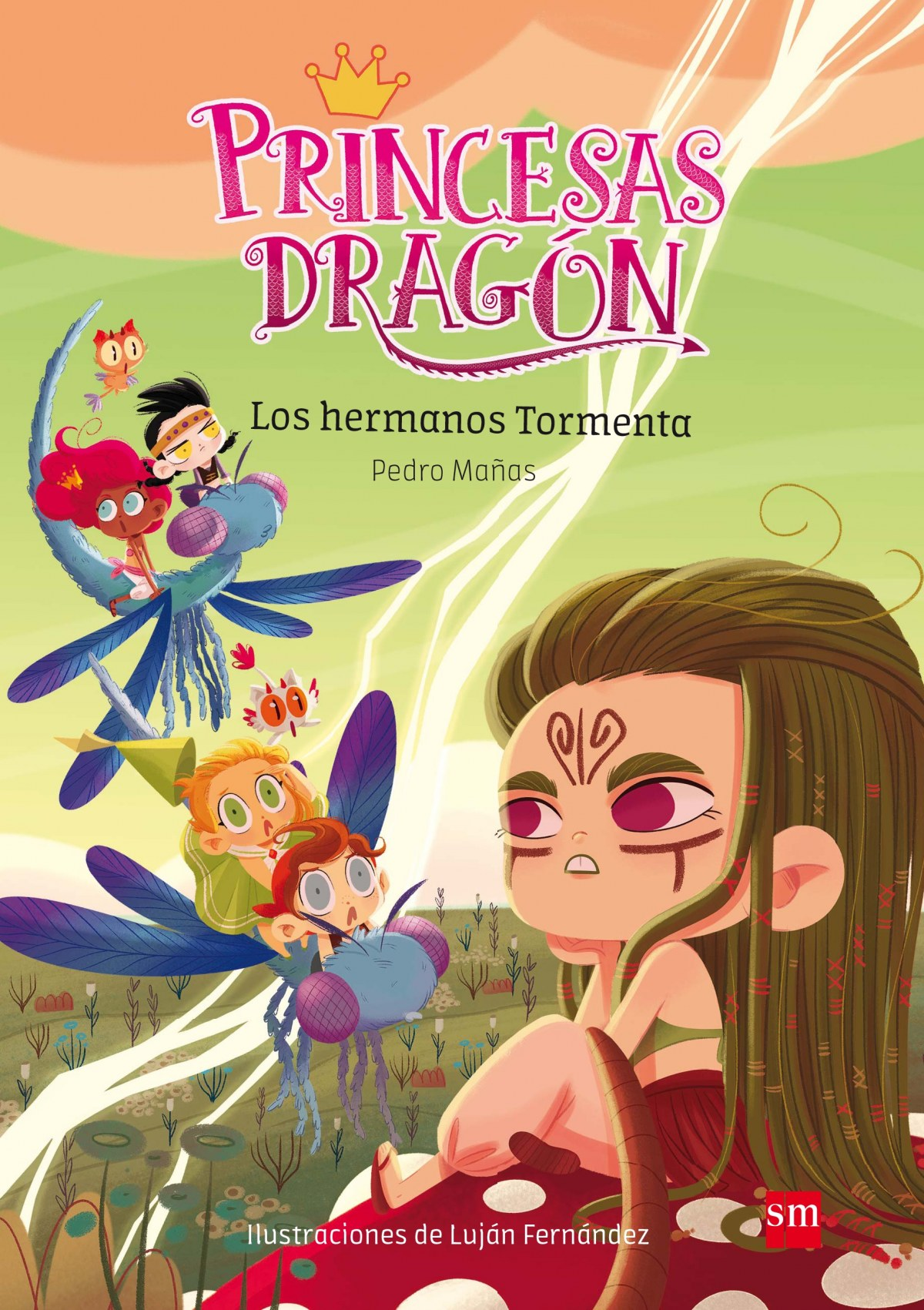 PRINCESAS DRAGON 5  LOS HERMANOS TORMENTA