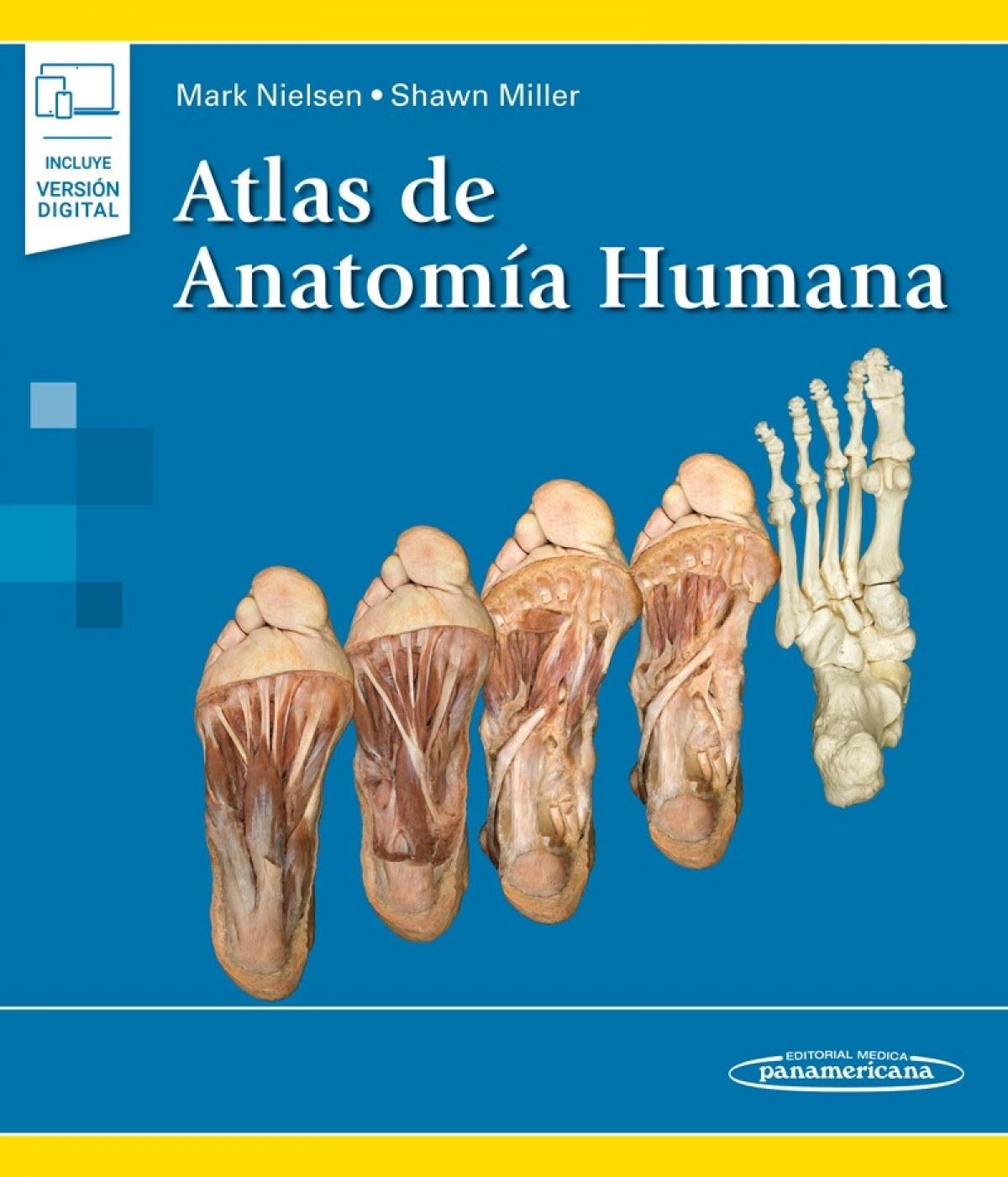 NIELSEN:Atlas de AnatomÆa Humana+e