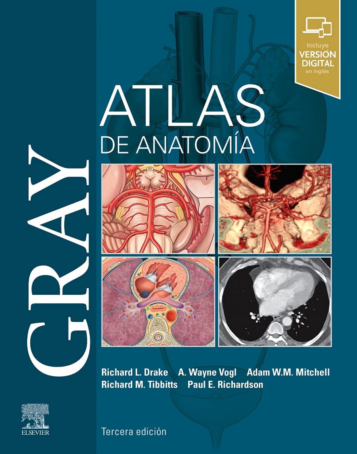 Gray. Atlas de Anatomía (3ª ed.)