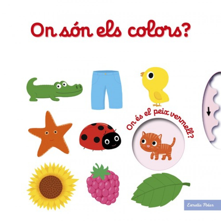 ON SON ELS COLORS?