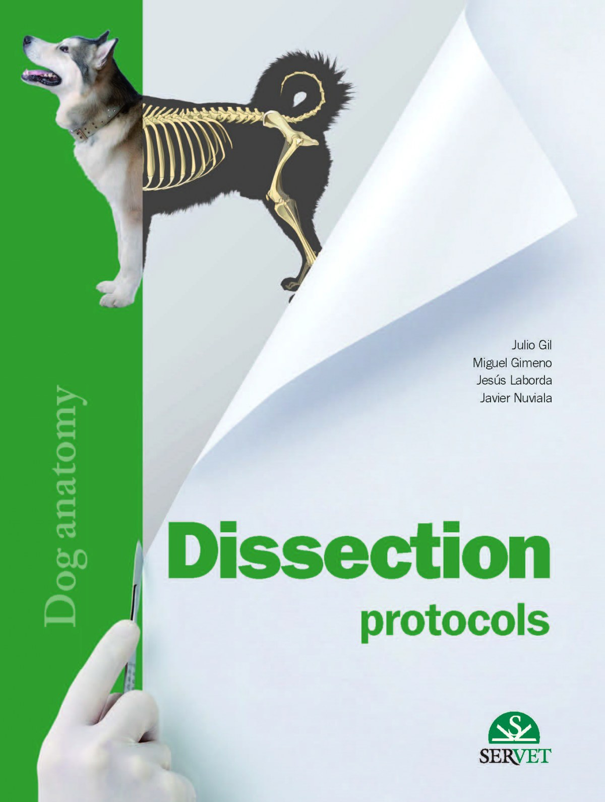 Dissection protocols. Dog Anatomy