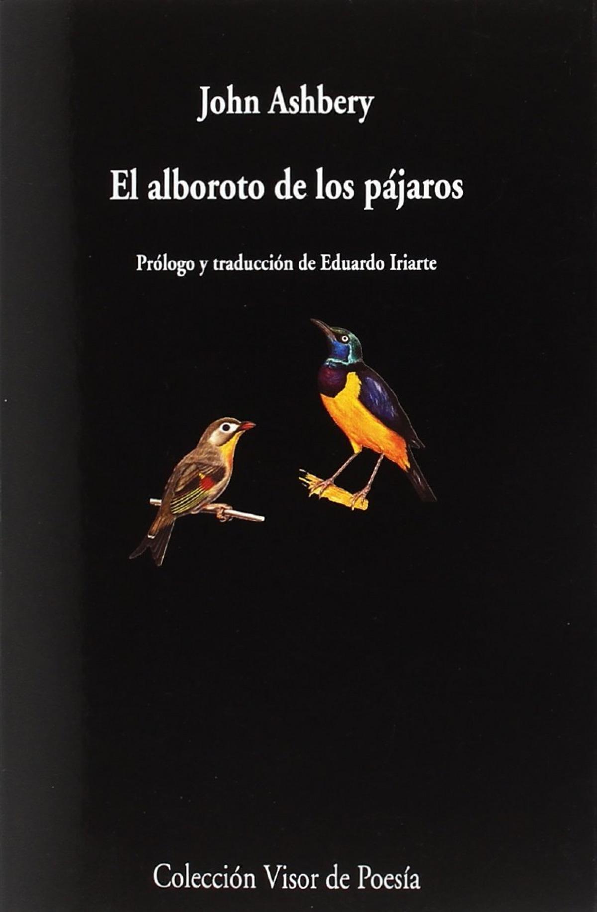EL ALBOROTO DE LOS PÁJAROS