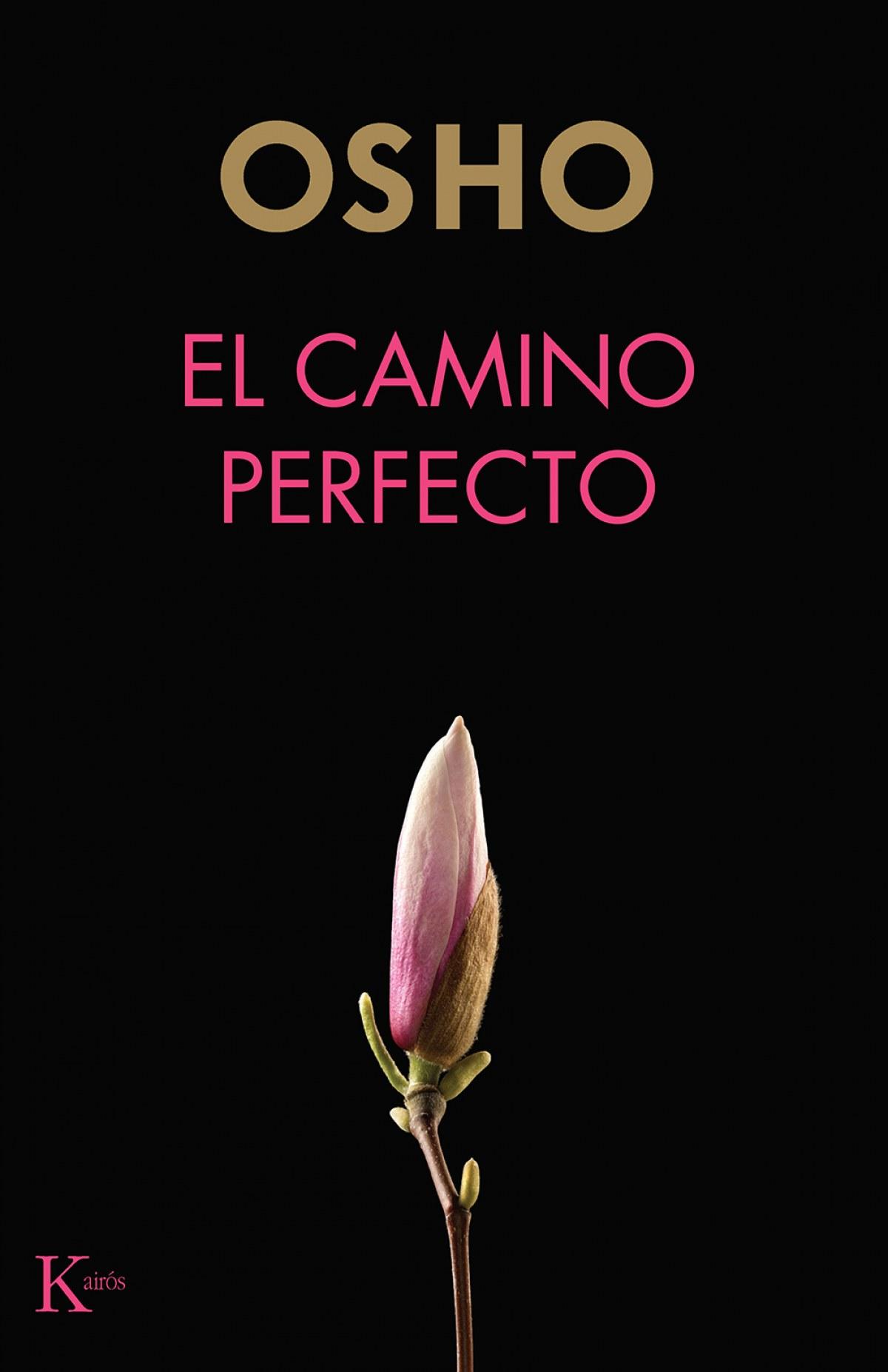 El camino perfecto