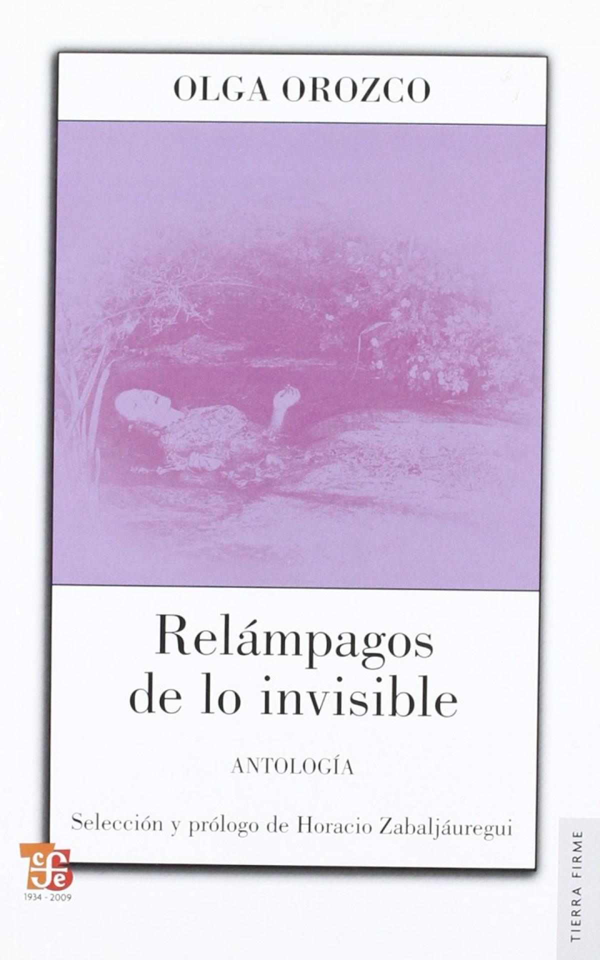 Relámpagos de lo invisible : Antología