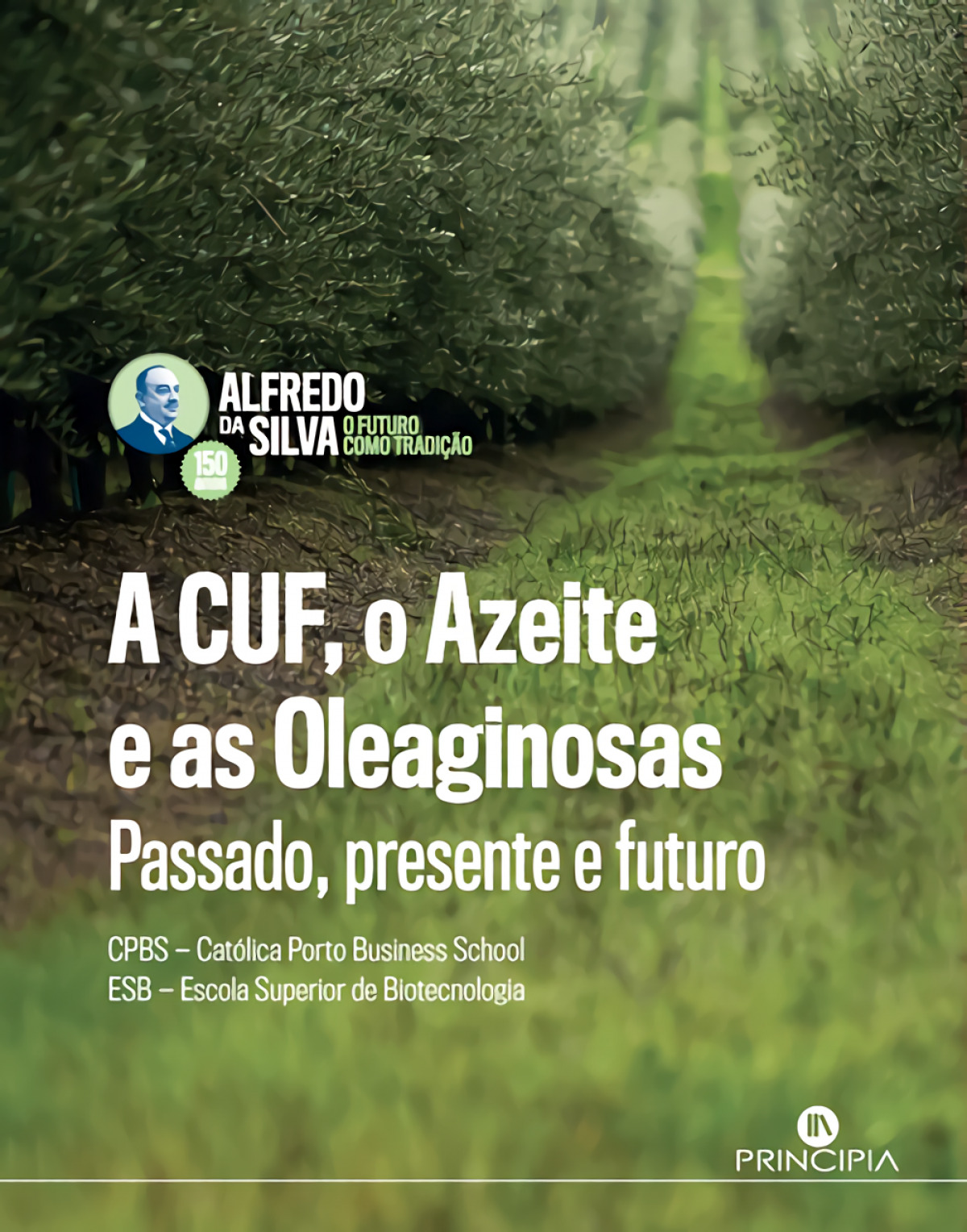A CUF O AZEITE E AS OLEAGINOSAS