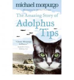AMAZING STORY ADOLPHUS TIPS