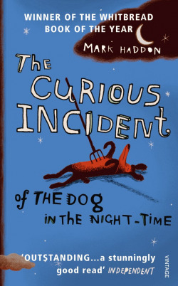 The curious incident of the dog in the night time