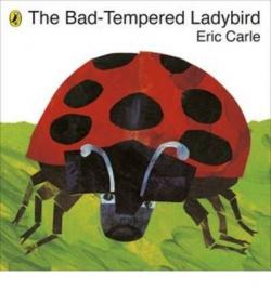Bad tempered ladybird