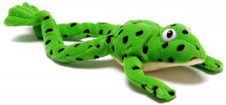 (PACK 10).READ WRITE INC.:FRED THE FROG TOY