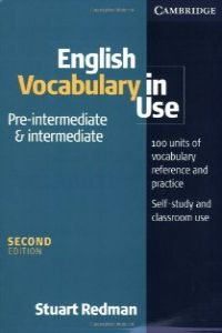(+KEY-CD).ENG.VOCABULARY IN USE:PRE-INTERM.-INTERMEDIATE