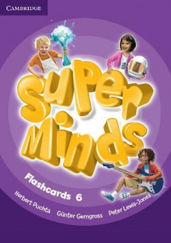 Super Minds Level 6 Flashcards (Pack of 98)