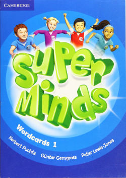 Super Minds Level 1 Wordcards (Pack of 90)
